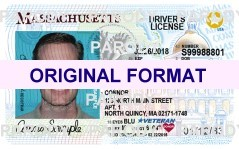 Fake id novelty id fake driver license florida novelty id card fake id novelty id fake driver license florida novelty id card template florida driver license pronofoot35fo Gallery