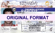 NEVADA DRIVER LICENSE ORIGINAL FORMAT, DESIGN SPECIFICATIONS, NOVELTY SECURITY CARD PROFILES, IDENTITY, NEW SOFTWARE ID SOFTWARE NEVADA driver